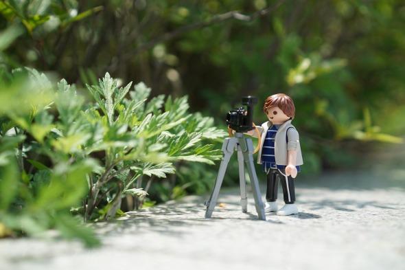 dedicarse a la fotografia